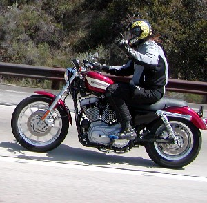 Martin on a Sportster